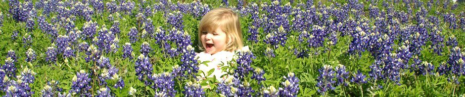 creative commons girl in bluebonnets_header